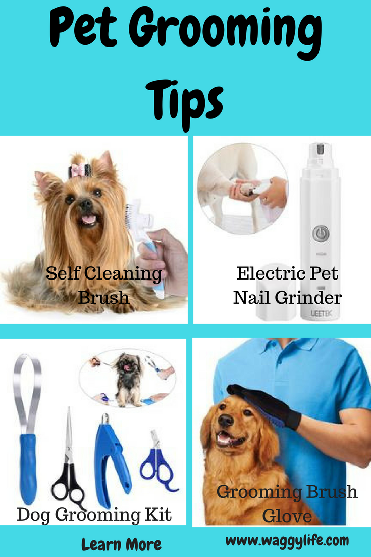A Curated Collection Of Pet Health Grooming And Safe To Use Products