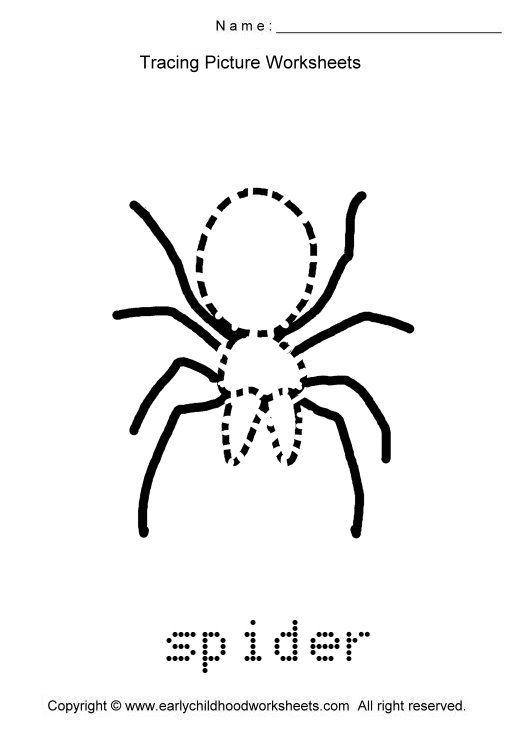 All Worksheets Spider Worksheets Printable Worksheets Guide – Spider Worksheets