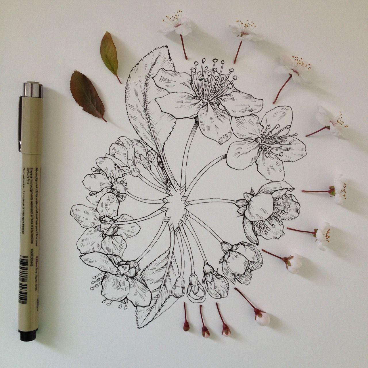 classy woman foto tattoo blumen flower pinterest blumen zeichnung botanische. Black Bedroom Furniture Sets. Home Design Ideas