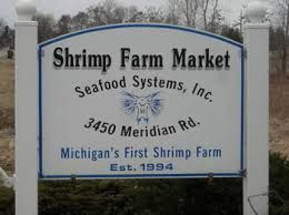 Image result for shrimp culture back yard