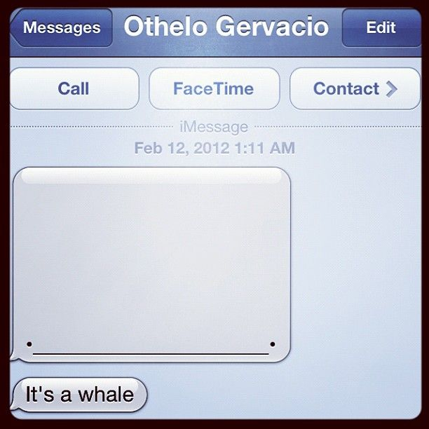 """It's a whale ... By @othelorules"""