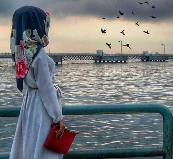 Hijab Fashion, Hijab Dpz, Hijab Niqab