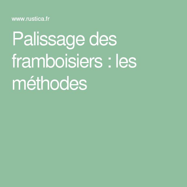 Palissage des framboisiers les m thodes framboisier - Comment tailler les framboisiers ...