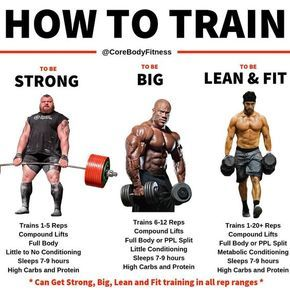 top 15 muscle building tips to maximize your gains with