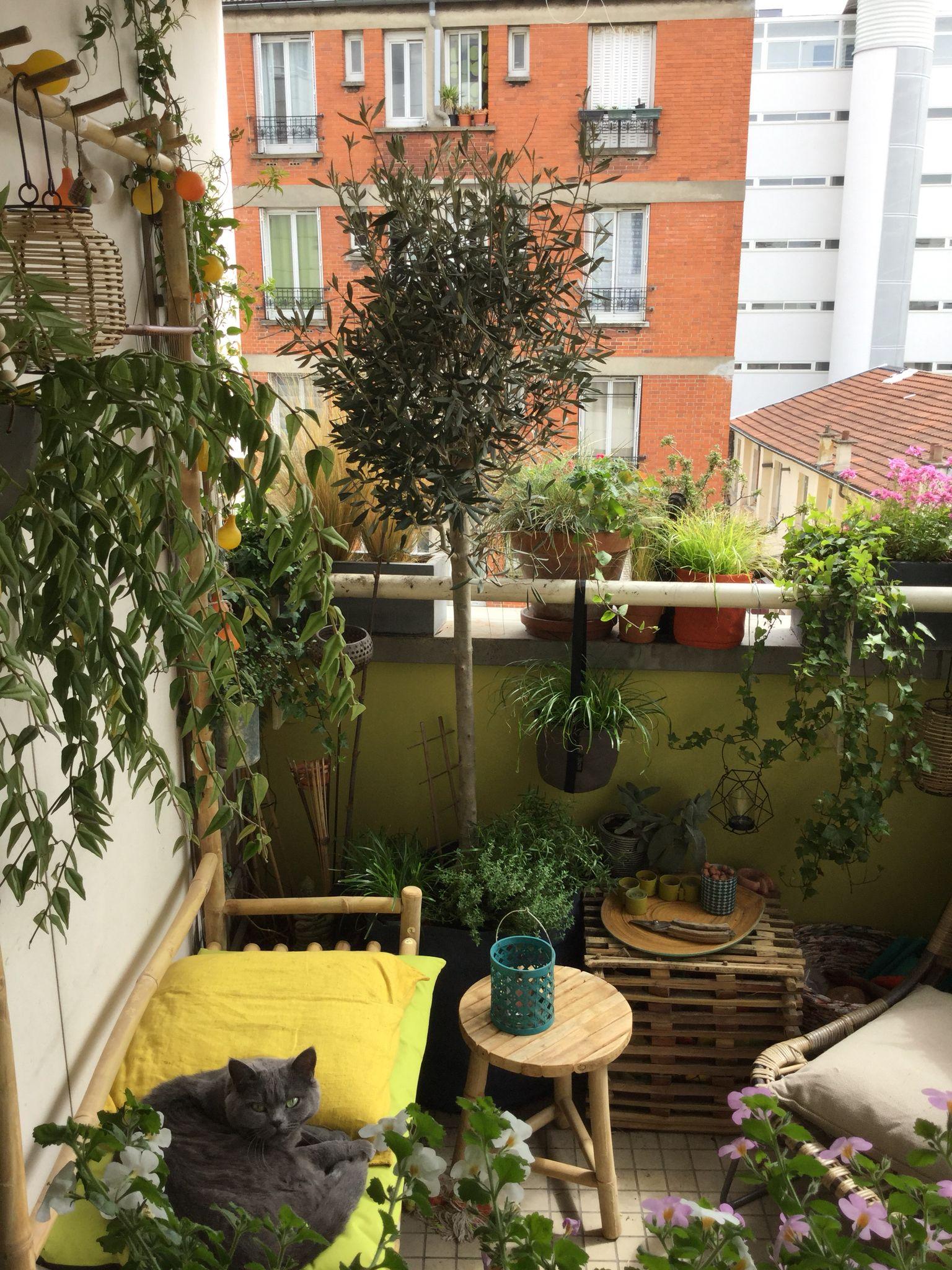 Mon Petit Jardin Parisien With Images Outdoor Decor Patio Garden