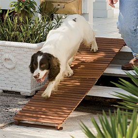 Attirant Dog Ramp For Stairs