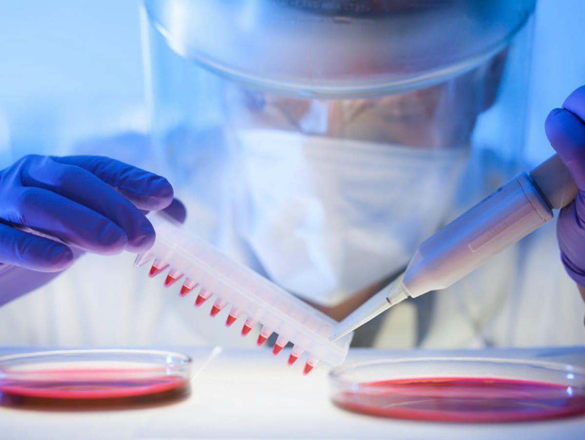 CSIR-NEERI Latest Jobs 2019 MSc Microbiology candidates are