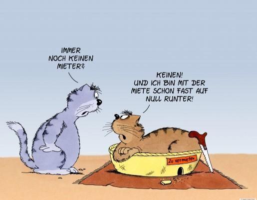 uli stein — cartoons & fotografie | cartoons - ulistein.de, Einladung