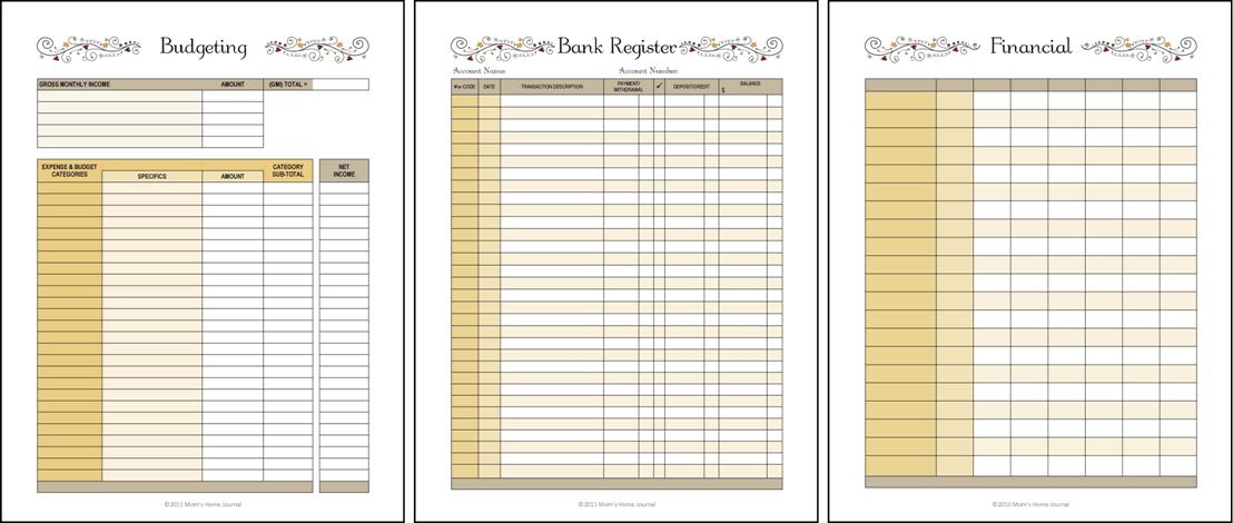 Financial Organizer Notebook  Financial Planner Budget Forms For
