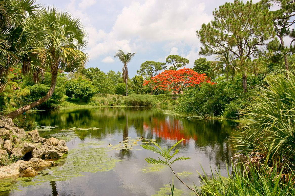 Mounts Botanical Garden West Palm Beachc | Mounts Botanical Garden ...