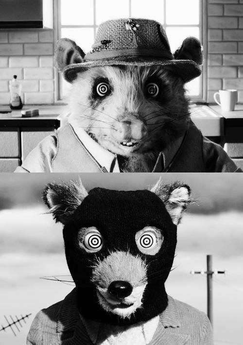 Fantastic Mr Fox Crazy Eyes Art Teddy Bear