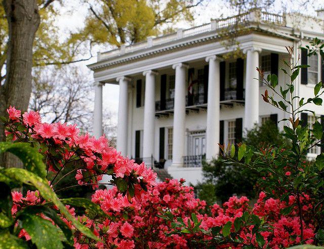 The White House | Tuscaloosa alabama, Alabama and Roll tide