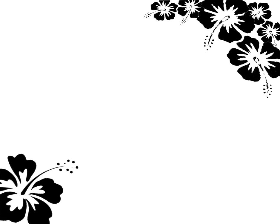 White background wallpaper wallpapersafari epic car wallpapers black and white flower background flower mightylinksfo