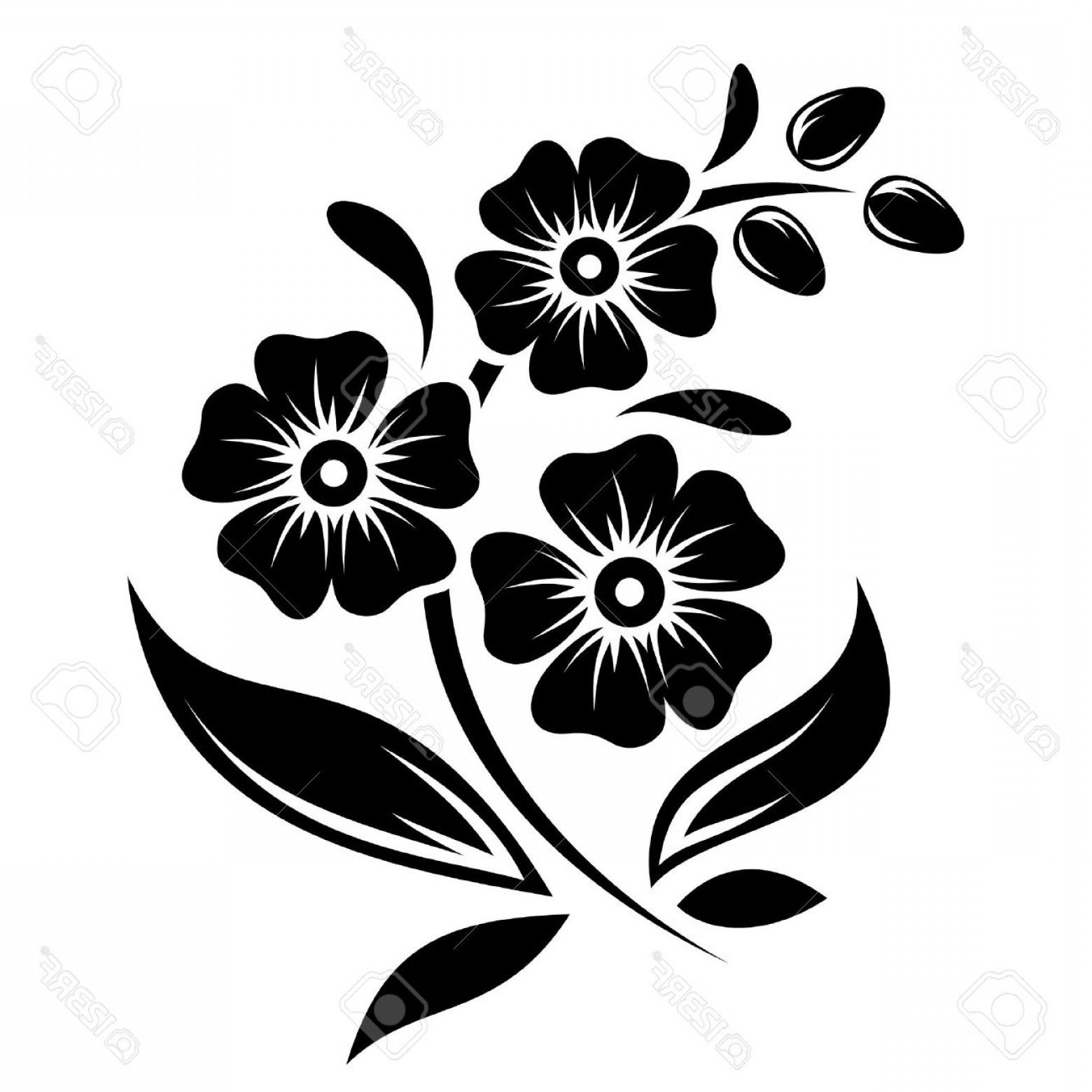 Found On Bing From Www Arenawp Com Flower Border Clipart White Flower Clip Flower Drawing Design