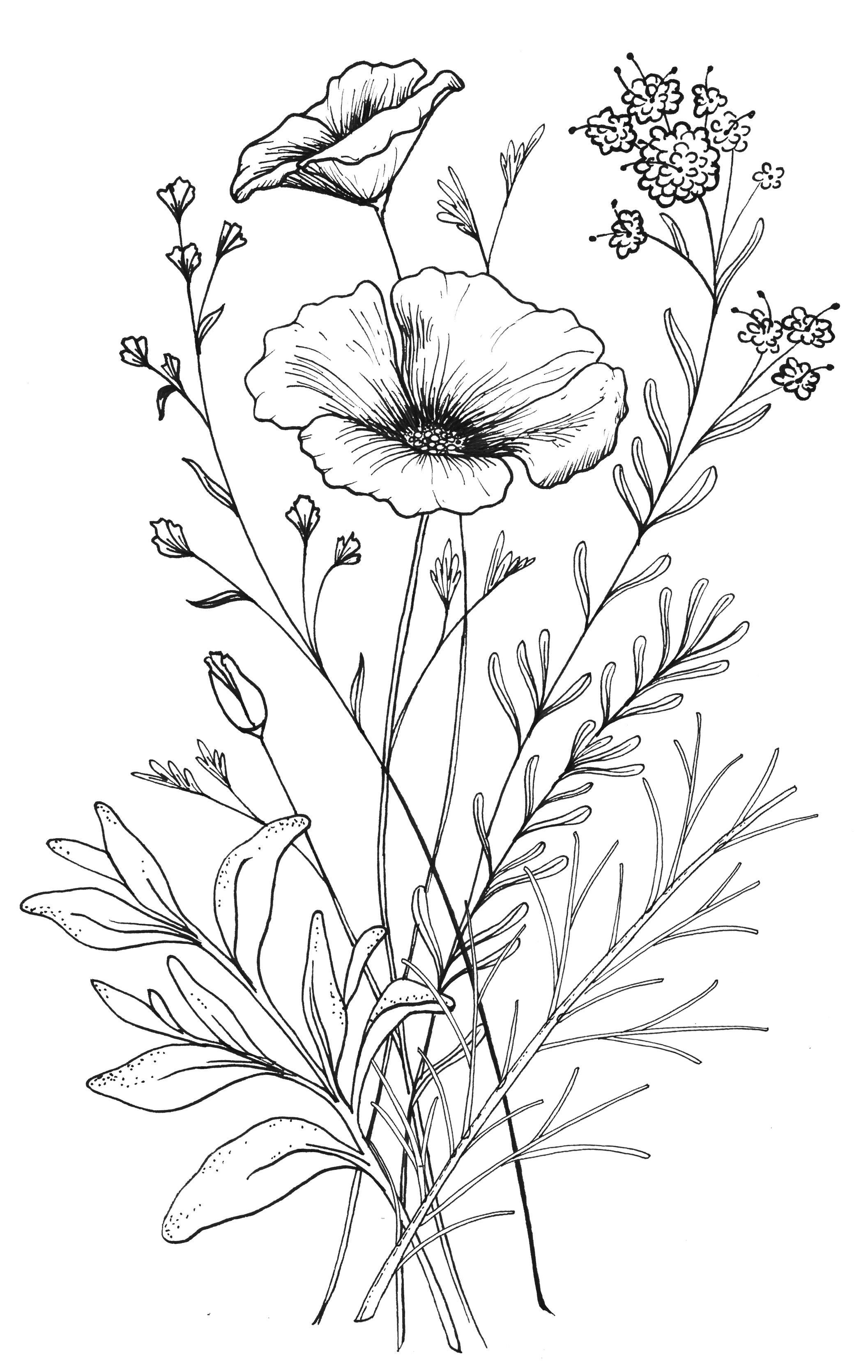 Line Drawing Flower Designs : Custom ca wildflower tattoo design from red umbrella