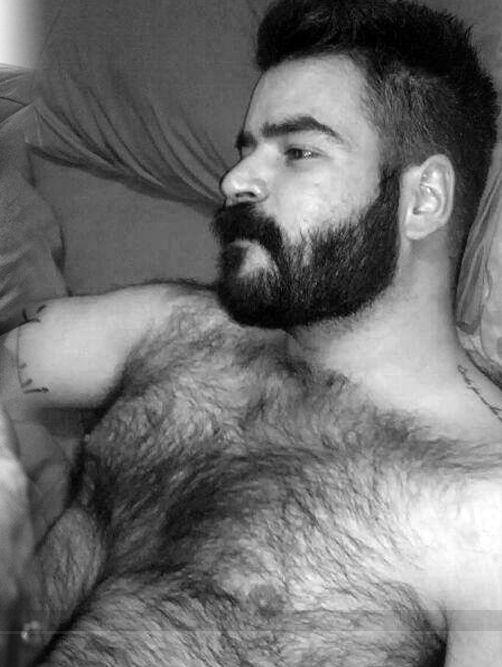 Tumblr gay beard