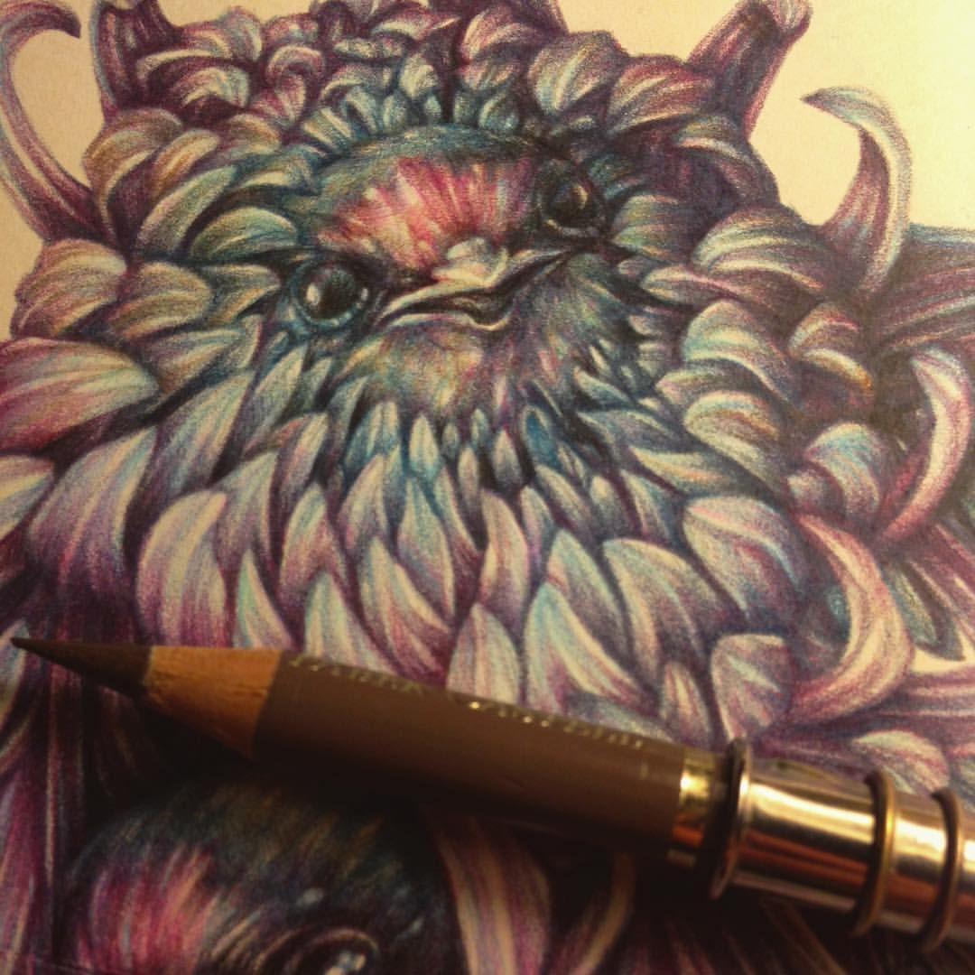 Wip #fabercastellpolychromos #fabercastell #coloredpencils #moleskine…