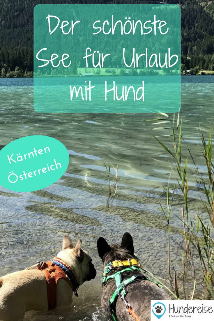 Urlaub mit Hund am Weissensee, Kärnten #whatkindofdog