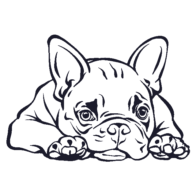 A3039 Auto Aufkleber Franzosische Bulldogge Name Autoaufkleber Franzosische Bulldogge Liegend Und Leic In 2020 Dog Drawing Drawing Artwork Pencil Drawings Of Animals