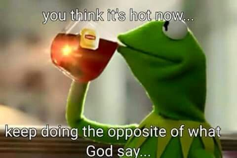 This Tea Is Absolutely Delicious Frog Quotes Clean Funny Jokes Jesus Memes