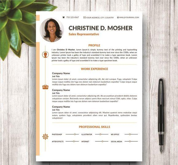 Professional Cv Template 4 Pages | Cv Template And Fonts