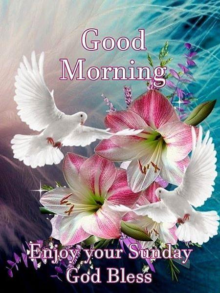 Good Morning Enjoy Your Sunday God Bless Weekday Morning
