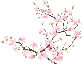 Res Favourites By Akikawadaioh On Deviantart Cherry Blossom Branch Cherry Blossom Drawing Cherry Blossom