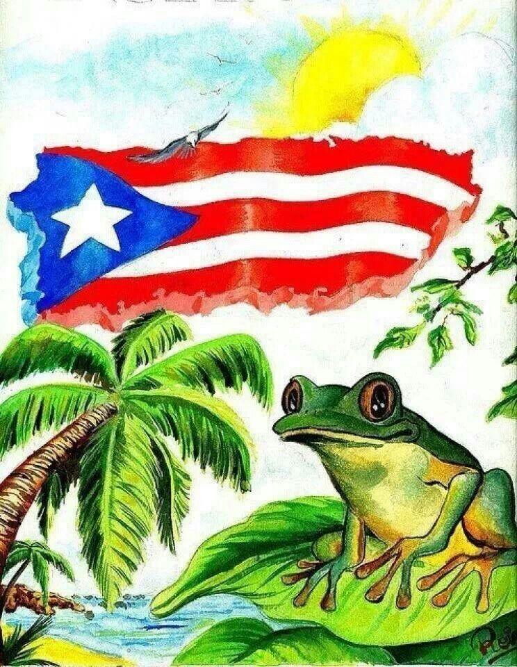 Puerto Rican Art  Things I Love  Puerto Rico, Navidades -2583