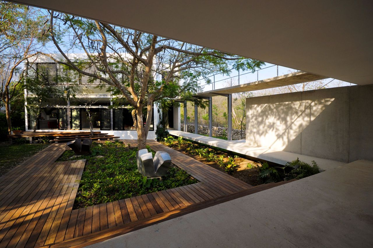 Modern House Trees Design With Courtyard