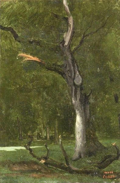 Camille Corot With Images Landscape Paintings Oil Painting