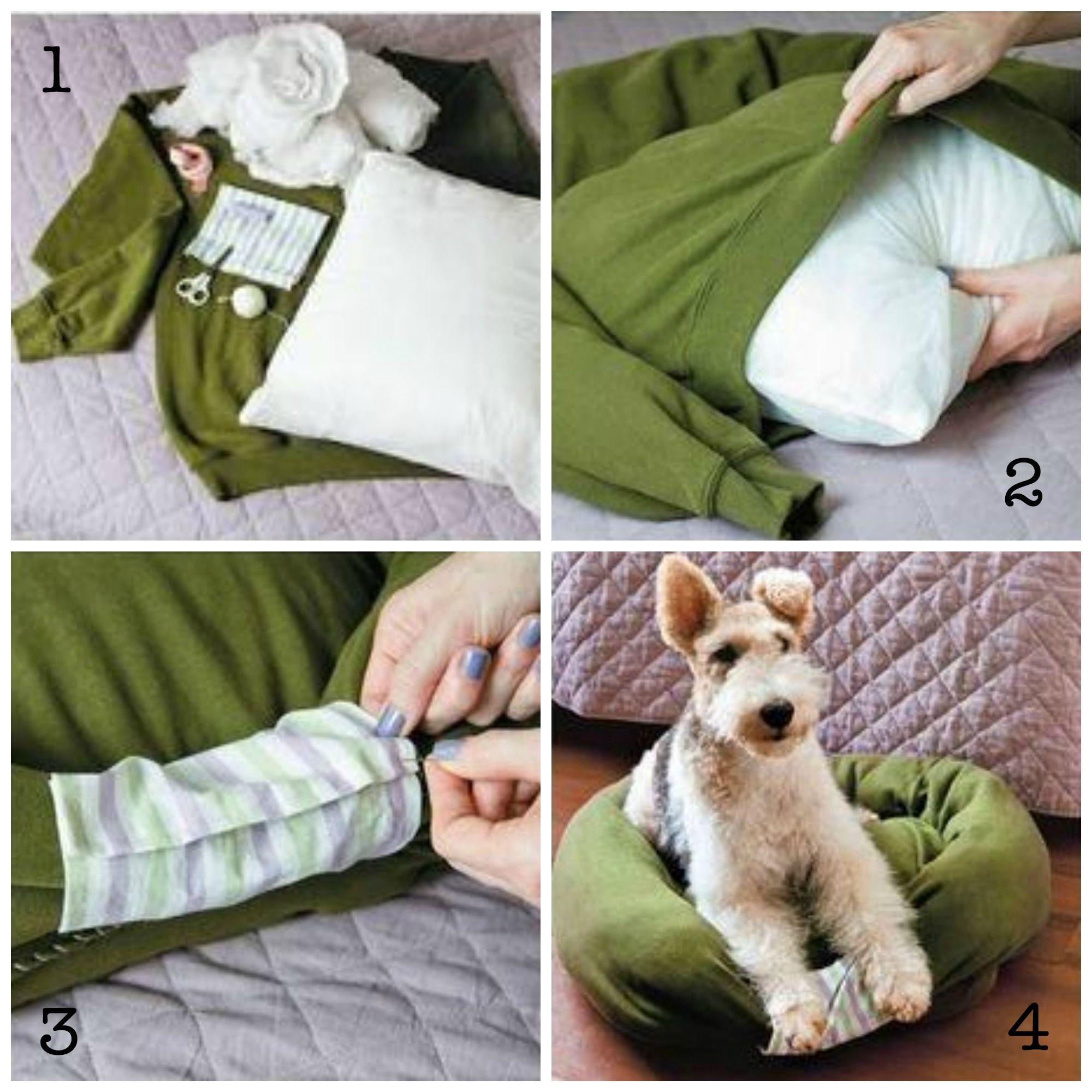 Ein Weihnachtsgeschenk für deine Fellnase - Gublog | Hunde ...