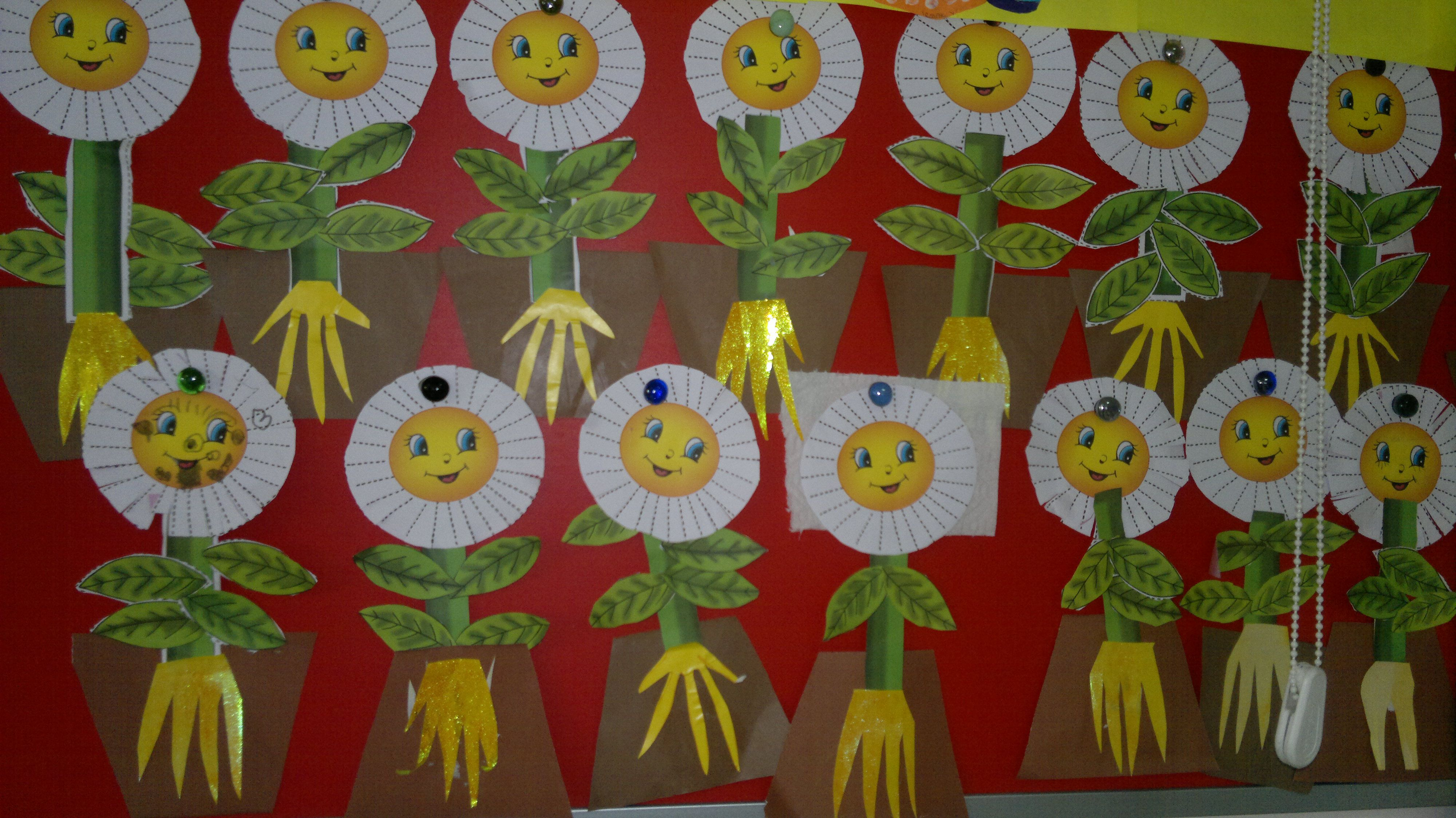 We Learned Plants Roots Stems Leaves Flowers