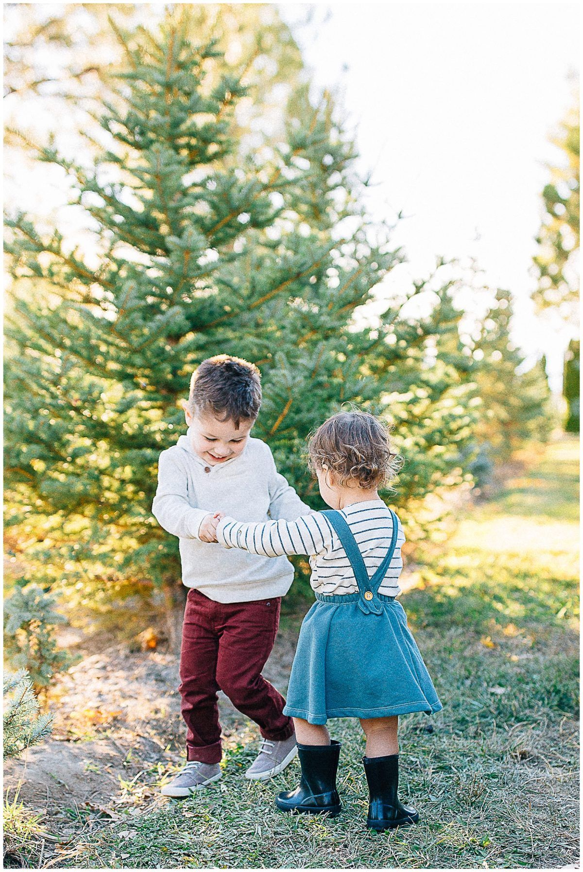 Baird Tree Farm Pictures Utah Family Photographer Truly Photography Family Tree Photo Utah Family Photographer Tree Farm Pictures