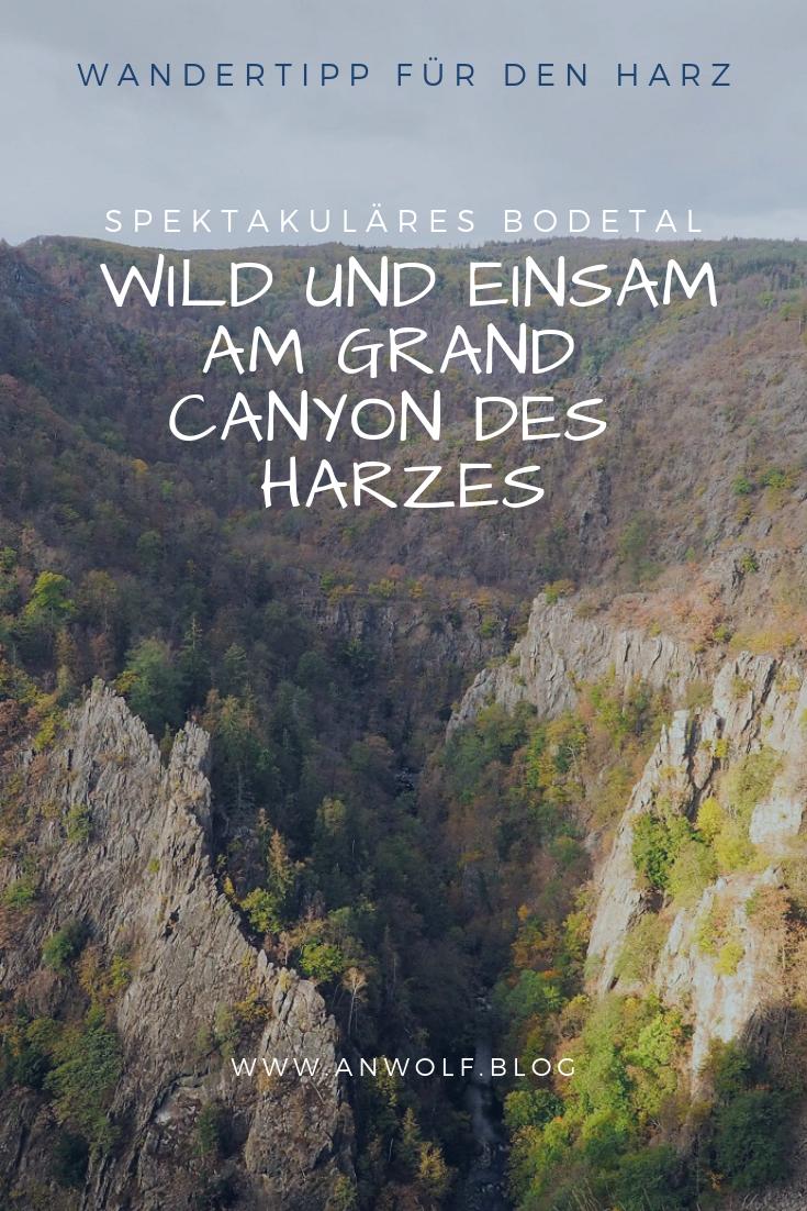 Harz | Wandertipp | Reisetipp | Bodetal | Reisereportage | Outdoor | Wandern | Reisen | Urlaub mit Hund | Wandern mit Hund | Hund | Ausflugstipp | Deutschland #holidaytrip