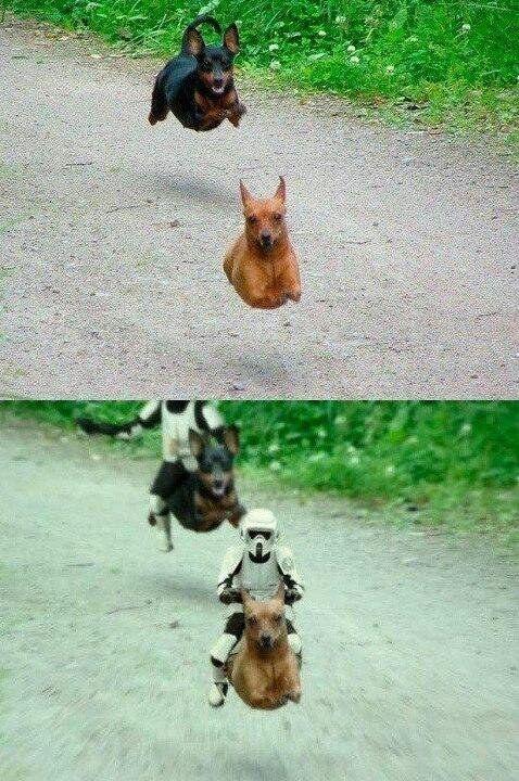 Sin Estar Guars vs con Estar Guars. | Los 21 mejores memes de Star Wars que verás online