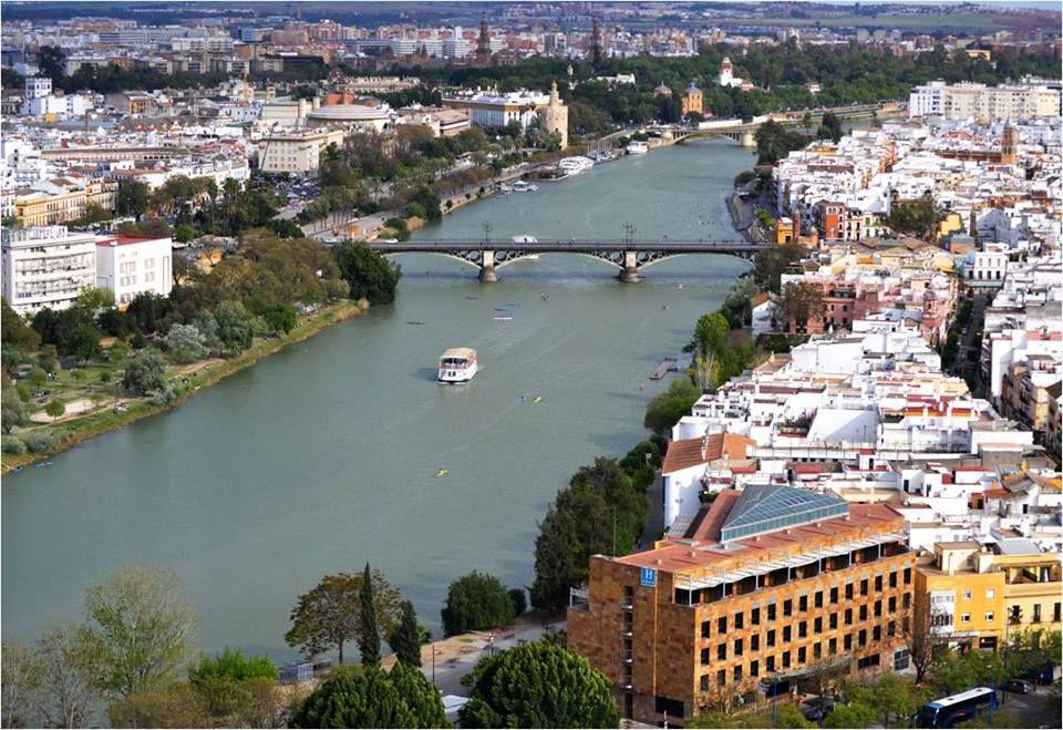 Os Mostramos Una Visión Diferente De Nuestro Hotel Desde Los Más De 180 Metros De Altura De La Torre Pelli Nos Encuentras En La Sevilla Hotel De Lujo Hotel