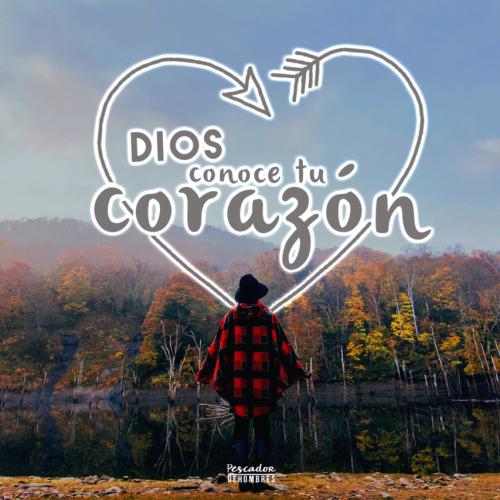 La Persona de Corazón Puro | LUZ ESPERANZA DEL IBEROAMERICA ® - MG.