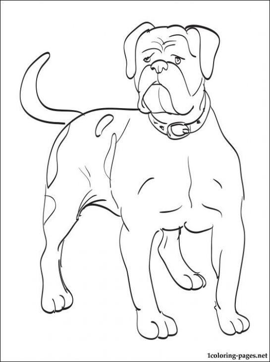 A Large Grown Up American Bulldog Coloring Page Letscolorit Com Animal Coloring Pages Puppy Coloring Pages Dog Coloring Page