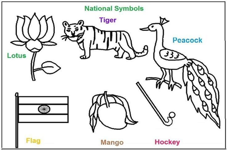National Symbols Of India Coloring Printable Pages India For Kids