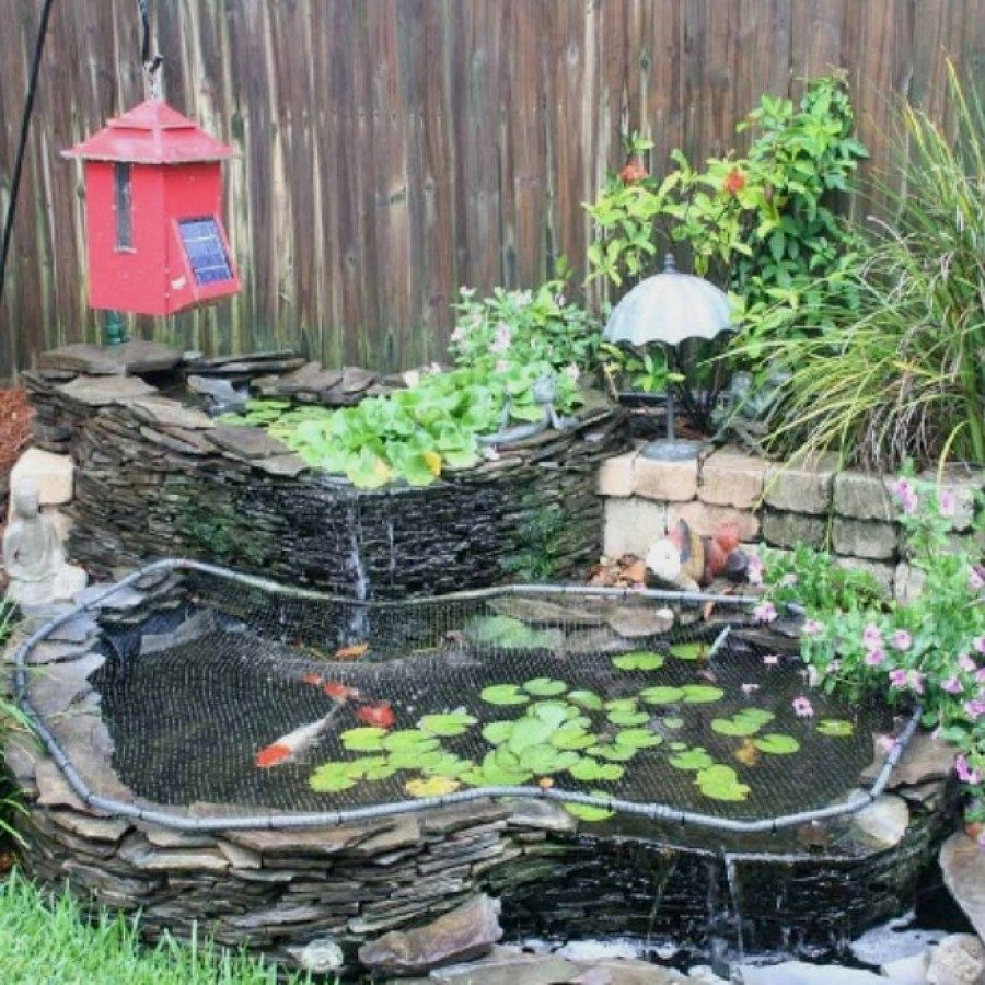 Ponds Backyard, Koi Pond Design