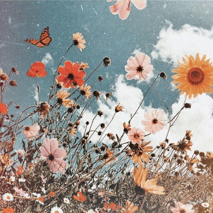 Flower Aesthetic, Photo Wall
