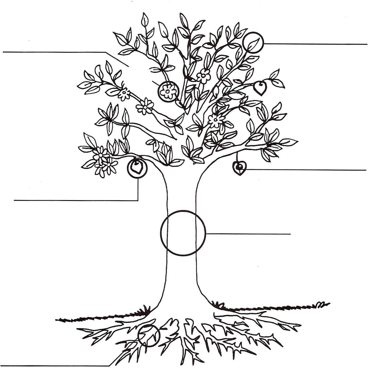 Hermosa Plantas Para Colorear Ilustración - Dibujos Para Colorear En ...