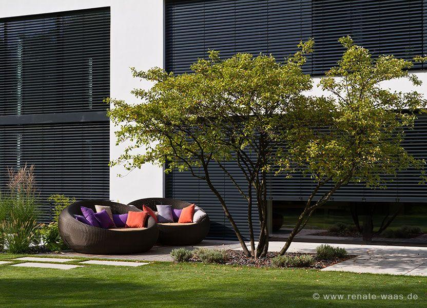 Gartendesign | Garten | Pinterest | Garten and Gardens