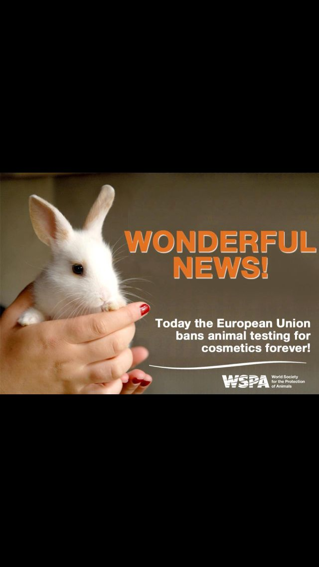 No more animal testing in Europe!!!! When will dumb America follow suit?!