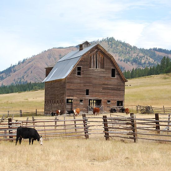 Old Country Barn Photo By: Tori Snow