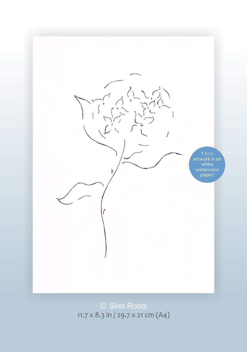 Original ink drawing Minimalist flower sketch Hydrangea line