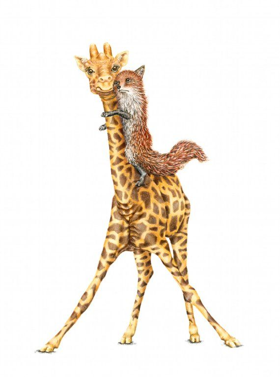 Original Artwork Giraffe And Fox By Katherine Thomas Products