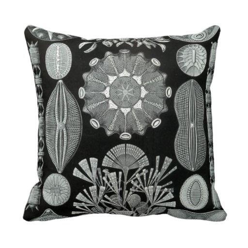 Ernst Haeckel Throw Pillow!!!  http://www.zazzle.com/ernst_haeckel_throw_pillow-189517913968688970