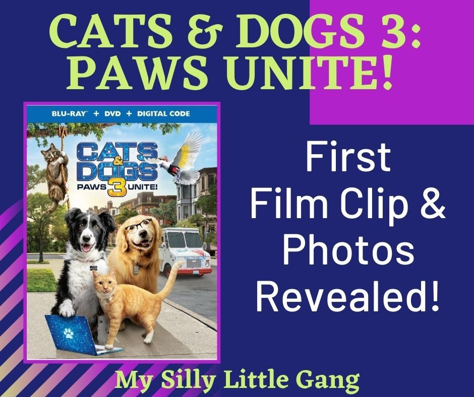Cats Dogs 3 Paws Unite First Film Clip Photos Revealed Catsanddogs3 My Silly Little Gang In 2020 Film Clips Dog Movies Dog Cat