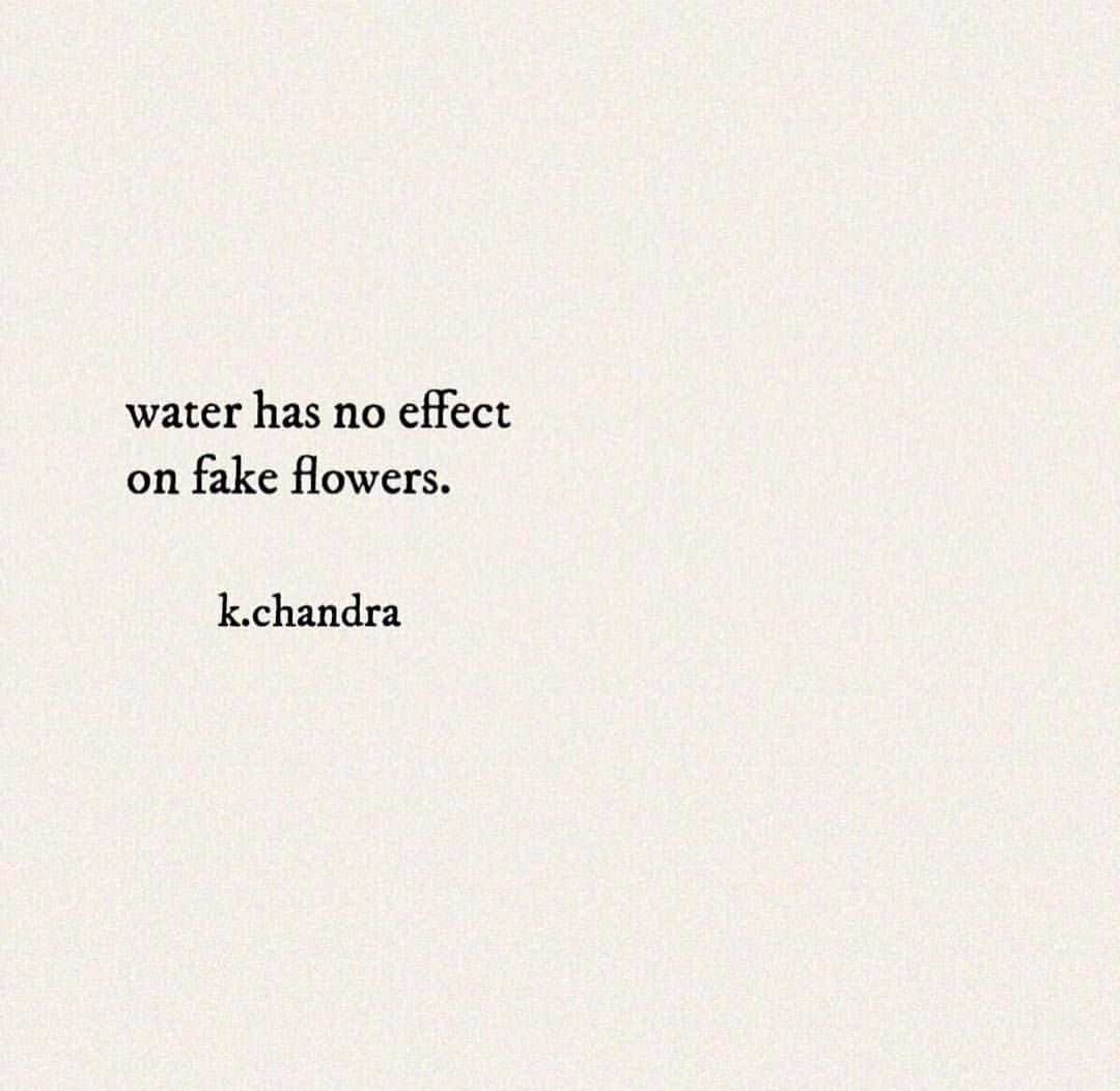 fake flower quotes